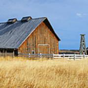 Barn In Calgary Art Print