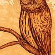 Barred Owl Coffee Painting Art Print