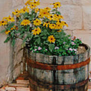 Barrel Of Flowers Art Print