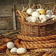 Basket Of Eggs On Straw Art Print