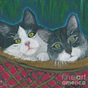 Basket Of Kitties Art Print