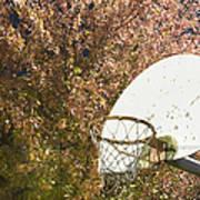 Basketball Hoop Art Print by Andersen Ross