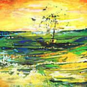 Bathed In Golden Light Art Print