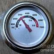 Bbq Thermometer Art Print