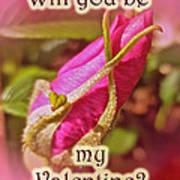 Be My Valentine Greeting Card - Rosebud Art Print