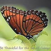 Be Thankful Art Print by Carol Groenen