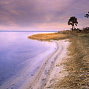 Beach Along Saint Josephs Bay Florida Art Print