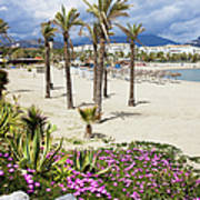 Beach In Puerto Banus Art Print