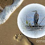 Beached Heron Art Print
