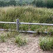 Beachside Fence Panorama Art Print by Chris Hill