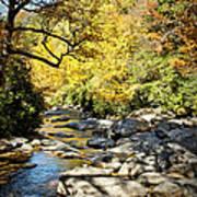 Beautiful Fall Scene Art Print