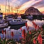 Beautiful Morro Bay Art Print