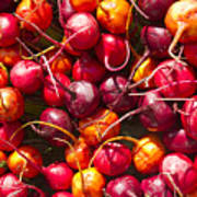 Beets At A Farmer's Market, Boulder, Colorado Art Print