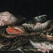 Beijeren: Fish Art Print