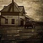 Bellis Alberta Art Print