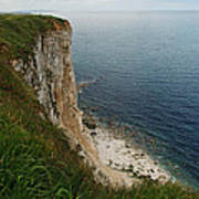 Bempton Cliffs 4 Art Print