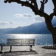 Bench And Tree On An Alpine Lake Art Print