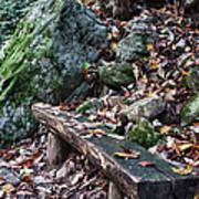 Bench Beside The Trail To Cascade Falls Art Print