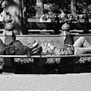 Bench Bums In Black And White Art Print