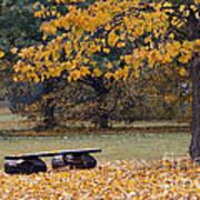 Bench In The Autumn Landscape Art Print