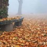 Bench In The Fog Art Print