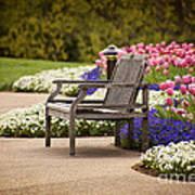 Bench In The Park Art Print
