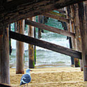 Beneath The Pier II Art Print
