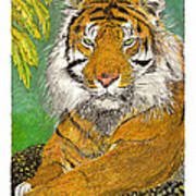 Bengal Tiger With Green Eyes Art Print by Jack Pumphrey