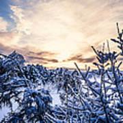 Bergen Winter Art Print