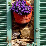 Between Shutters Art Print