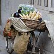 Bicycle Loaded With Food, Delhi, India Art Print