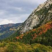 Big Cottonwood Canyon 2 Art Print
