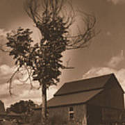Bills' Barn Art Print
