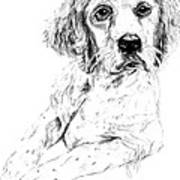 Bird Dog Art Print