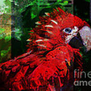 Bird Of Exotic Color Art Print by Christine Mayfield