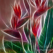 Bird Of Paradise Fractal Panel 2 Art Print