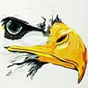 Bird Of Prey  Eagle Art Print