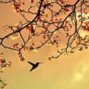 Bird Singing In The Morning Sky Art Print