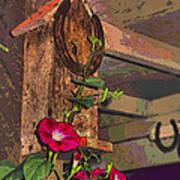 Birdhouse Morning Glories Two Art Print