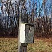 Birdhouse On A Pole Art Print