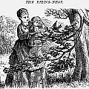 Birds Nest, 1873 Art Print
