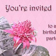 Birthday Party Invitation - Pink Flowering Bromeliad Art Print