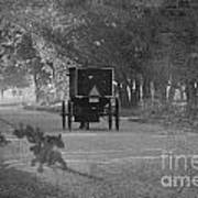 Black And White Buggy Art Print