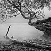 Black And White Mystic Lake Art Print