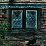 Black Birds Sitting On Roof By Window Art Print