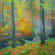 Black Forest Stream Art Print