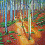Black Forest Sunset Art Print