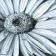 Black White Gerber Art Print
