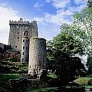 Blarney Castle, County Cork, Ireland Art Print