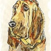 Bloodhound-watercolor Art Print